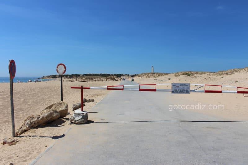 A la izquierda playa de La Aceitera y al fondo el Faro de Trafalgar
