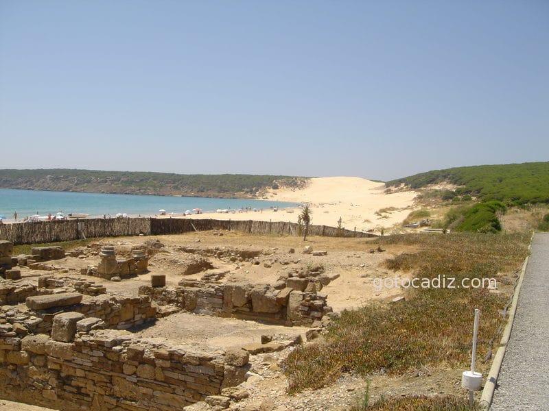 Ruinas de Baelo Claudia con la duna de Bolonia al fondo