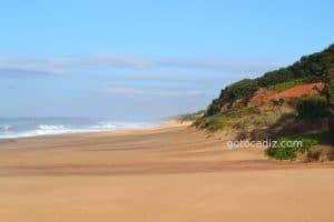 La playa de Roche ¡como nunca te la han contado!