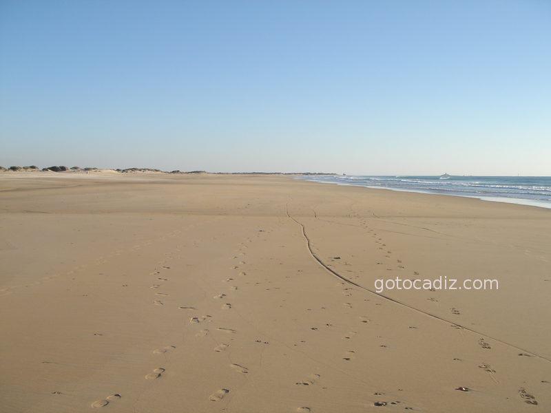 Playa de la Punta del Boqueron